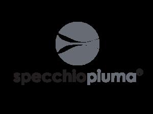 specchiopiuma